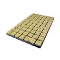 Grodan propagation plugs 36mm full tray of 77